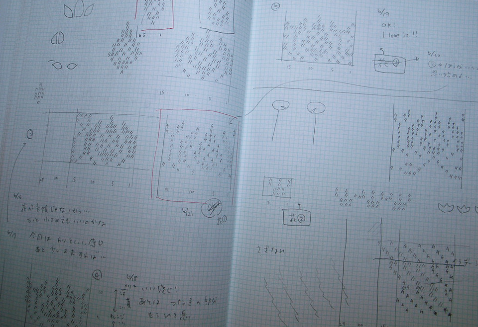 Yumi's charts and sketches of the Lotus flower
